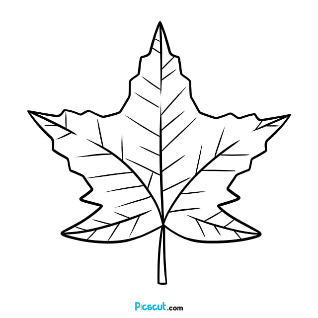Leaf Clipart Black And White Maple Beautiful Png Image For Free Download Picscut